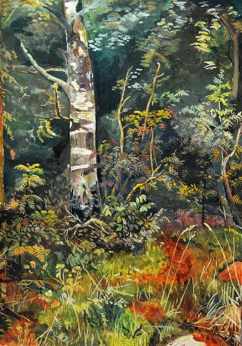 Копия картины Шишкина